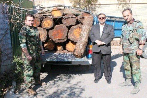 ۲.۵ تن چوب جنگلی قاچاق در شهریار کشف شد