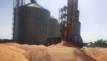 افزایش ظرفیت ذخیره سازی گندم در ایلام