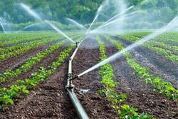تجهیز چهار هزار هکتار از اراضی خراسانجنوبی به سیستم آبیاری نوین
