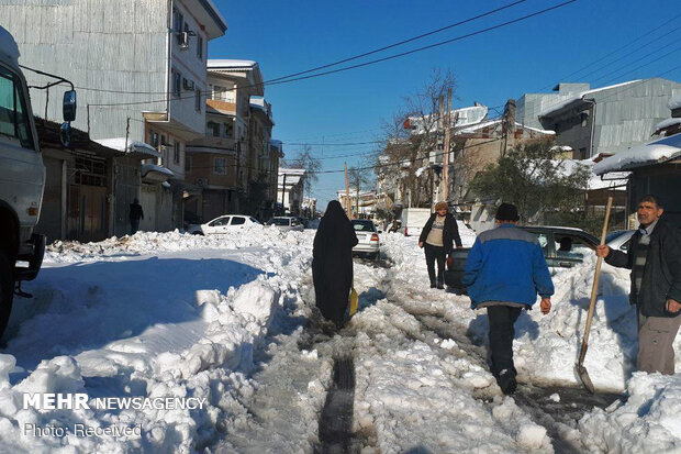 Rasht 3 days after heavy snowfall