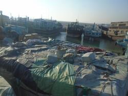 توقیف بیش از ۴۱ میلیارد ریال کالای قاچاق در گناوه