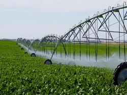 اختصاص اعتبار ۱,۶۰۰ میلیارد تومانی صندوق توسعه برای آبیاری نوین