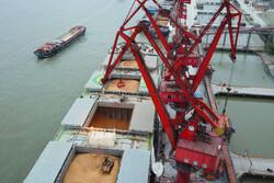 افزایش ۴۰ درصدی واردات کالاهای اساسی/ چندین برابر نیاز کشور ذخیره کالا داریم
