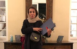 Iranian art curator Mina Etemad receives France's Chevalier of Legion of Honor