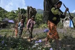 زندگی کشاورزان میانماری