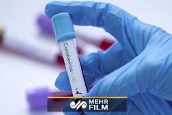 تلاش مراکز بهداشتی برای کنترل ویروس کرونا