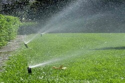 وضعیت استفاده از منابع آب در بوستانهای تهران وخیم است