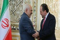 Iranian, Austrian FMs hold talks in Tehran