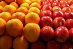 صادرات سیب و پرتقال تا اطلاع ثانوی محدود شد/ آغاز توزیع میوه شب عید بدون هیچ محدودیت