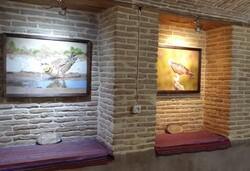 نمایشگاه عکس حیات وحش در گالری سرای فاتح نی ریز برپا شد