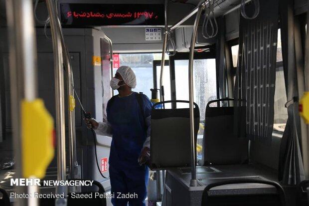 Disinfecting public transportation fleet in Bandar Abbas