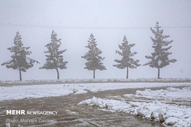 Bojnourd covered in snow