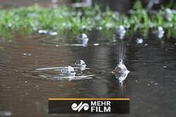 ورود سامانه بارشی به کشور از روز چهارشنبه