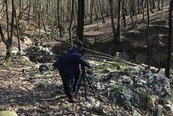 روایتی از تبدیل جنگلهای هیرکانی به محل دفن زباله در یک مستند