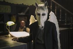 """""""White Winged Horse"""""""