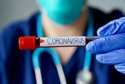 قطر میں کورونا وائرس کی تصدق