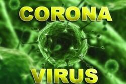 کورونا وائرس اردن اور تیونس بھی پہنچ گيا