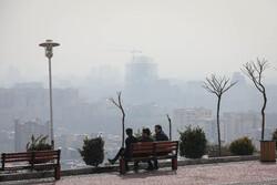 ریسک سرطان زایی ناشی از فلزهای سمی در مناطق تهران بررسی شد