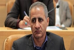 Iran's exports to Iraq 'underway': official