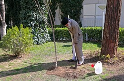 VIDEO: Ayat. Khamenei plants two saplings to mark Arbor Day