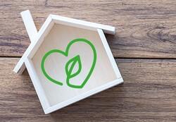 توسعه اوراق فشرده چوبی دوستدار محیط زیست توسط پژوهشگران