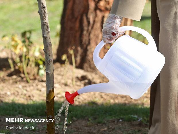 کاشت دو نهال توسط رهبر انقلاب در هفته منابع طبیعی