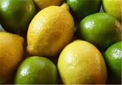 عرضه هزار تن لیموی کشف شده از یک سردخانه در جهرم با قیمت مصوب