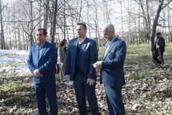 آیین درختکاری در ساری برگزار شد