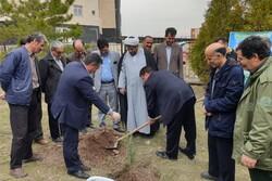 تحقق ۱۰۰درصدی تعهدات منابع طبیعی نهاوند در سندراهبردی استان همدان