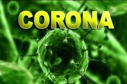 الصحة الاماراتية تسجل 15 إصابة جديدة بفيروس كورونا
