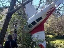امریکہ میں ایک چھوٹا طیارہ  گر کر درخت میں پھنس گیا