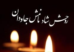 پیام تسلیت دانشگاه تهران در پی درگذشت پدر متالورژی ایران