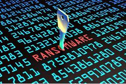 مهاجرت گسترده باج افزارهای ویندوزی به لینوکس