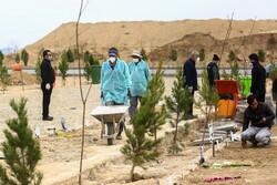 برخورد با قصور در تدفین متوفیان کرونایی خرمشهر/ شورای شهر نظارت کند