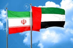 UAE's pharmaceutical, health aids delivered to Iran to combat COVID-19