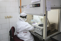 COVID-19 diagnostics laboratory in Ahavz