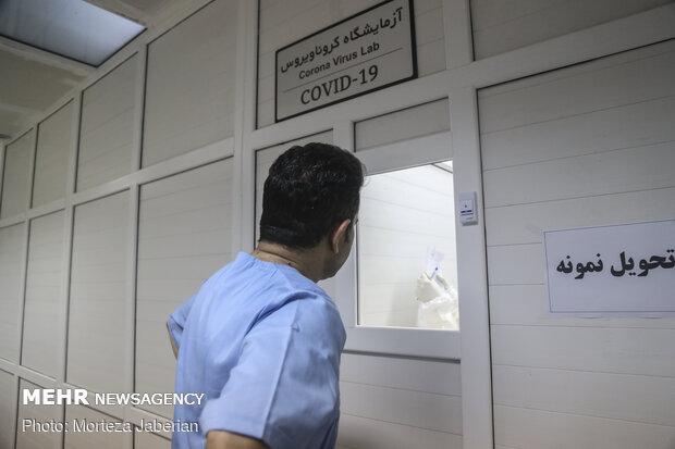COVID-19 diagnostics laboratory in Ahavz