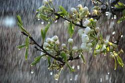 بارش ها پراکنده در گلستان/ دمای هوا کاهش می یابد