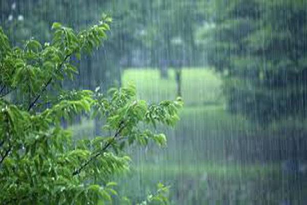 سامانه بارشی تا فردا در استان بوشهر فعال است