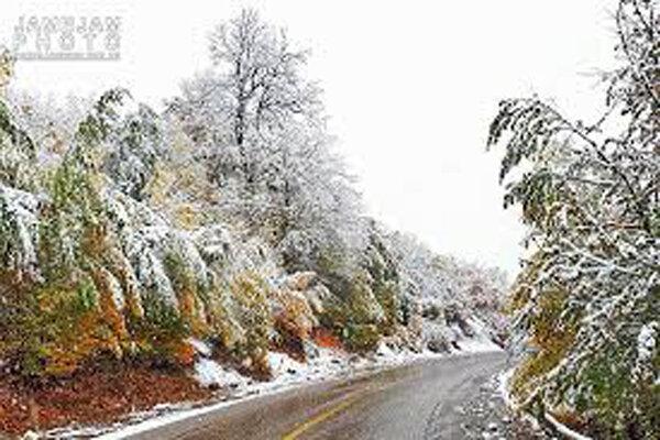 بارش برف بهاری برخی نقاط زنجان را سفیدپوش کرد