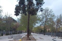 خیابان شهریار برای اتومبیلها مسدود شد/ عبور از یک پیادهراه هنری