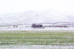 بہار کا سرمائي منظر