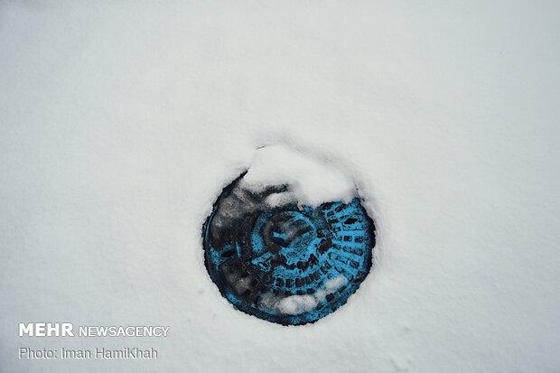 Hemedan'da bahar karı