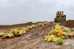 تولید زباله در ایران بالاتر از استاندارد جهانی نیست