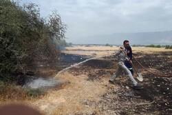 آتش سوزی در بخش رودخانه مهار شد