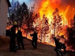 چین میں جنگلات میں لگی آگ کو قابو پانے کے دوران 19 اہلکار ہلاک