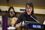 گزارشگر سازمان ملل خواستار رفع تحریم های ایران شد