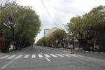 خیابانهای خلوت تبریز در روز طبیعت/ شکست کرونا نزدیک است