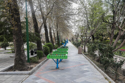 قدردانی شهردار منطقه چهار ازمشارکت شهروندان در پویش در خانه ماندن