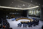 UNSC facing 'Grave Test'; rule of 'law' or 'jungle'?